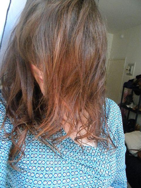 http://mademoisellerenarde.cowblog.fr/images/DSCN4214.jpg
